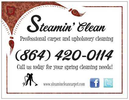 Professional Carpet, Rug And Upholstery Cleaning