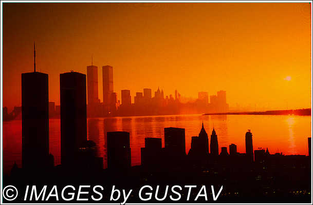 Professional Commercial Photographer - Images By Gustav