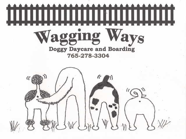 Wagging Ways Dog Daycare And Boarding