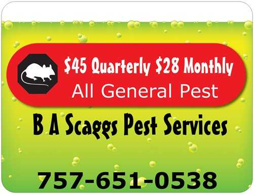 B A Scaggs Pest Services