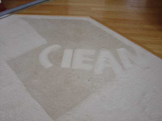 Carpet Cleaning $89 Two Rooms And Hall