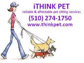 Reliable & Affordable Pet Sitting Services
