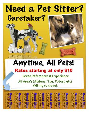 Petcare, Service, Babysitter