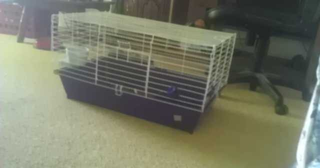 Ferret Cage With Accessories For Sale