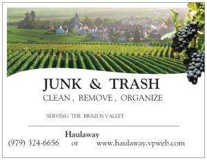 Bulk Trash Cleaning Service