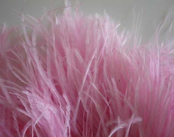 Plume And Dyed Ostrich Feathers For Wedding Decoration