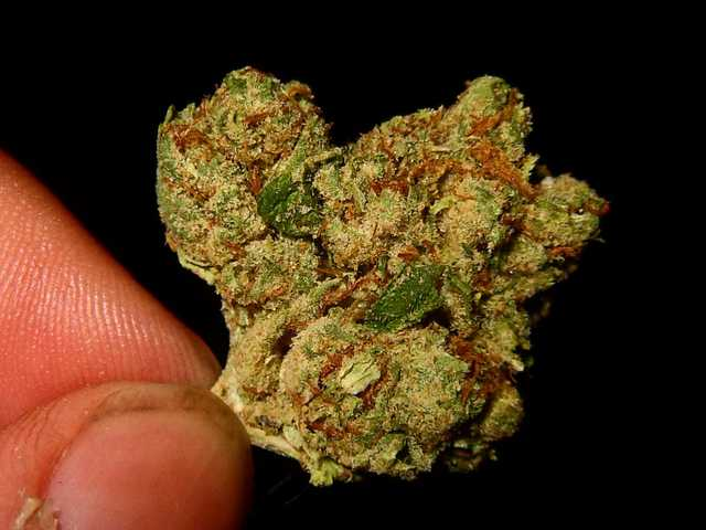 Real Medicated Marijuana Available Text (701) 892 - 7609