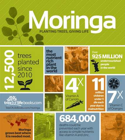 Zija Moringa Is Real!