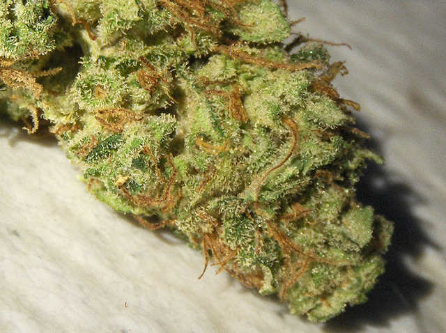 Top Grade Medical Marijuana For Sale