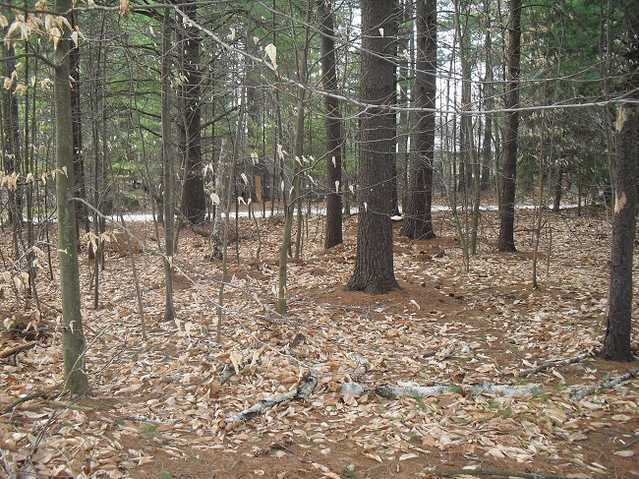 0.21 Acre Lot With Water Access