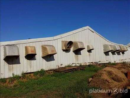(9) Chrome Time Barn Fans