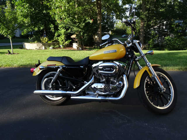 2007 Harley Davidson Sportster Low Xl1200l Pearl Yellow