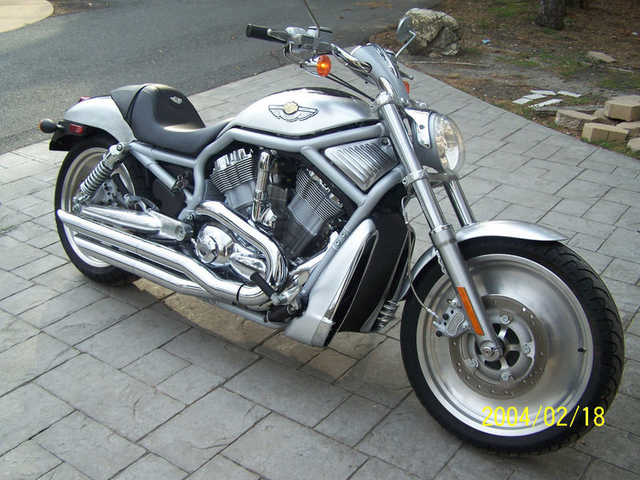 Never Been Down 2003 Harley - Davidson Vrsc V - Rod