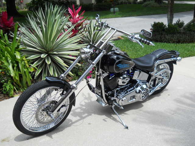 Mint Conditions 1996 Harley - Davidson Softail Mint Conditions