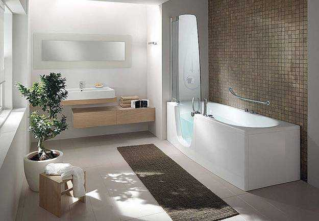 Walk In Tub Shower Combination
