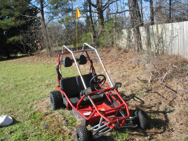 Gocart With Roll Cage