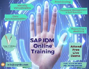 Sap Idm Online Training Usa